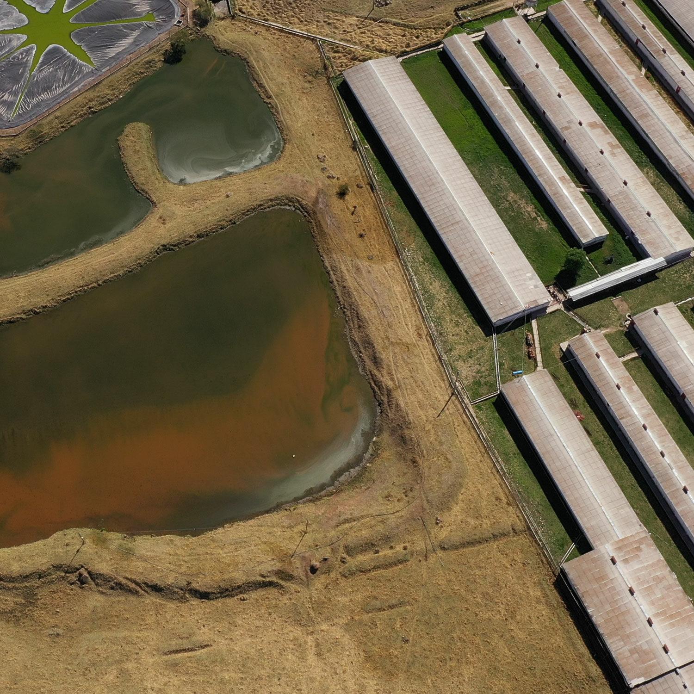Ariel view of sewage lagoon on pig farm